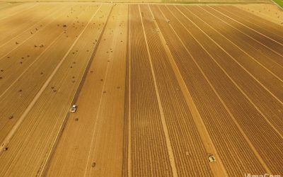Drone – Agriculture